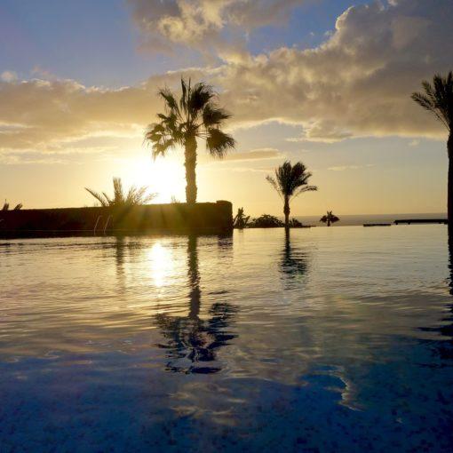 Sonnenuntergang, Palmen, Meer, traumhaft